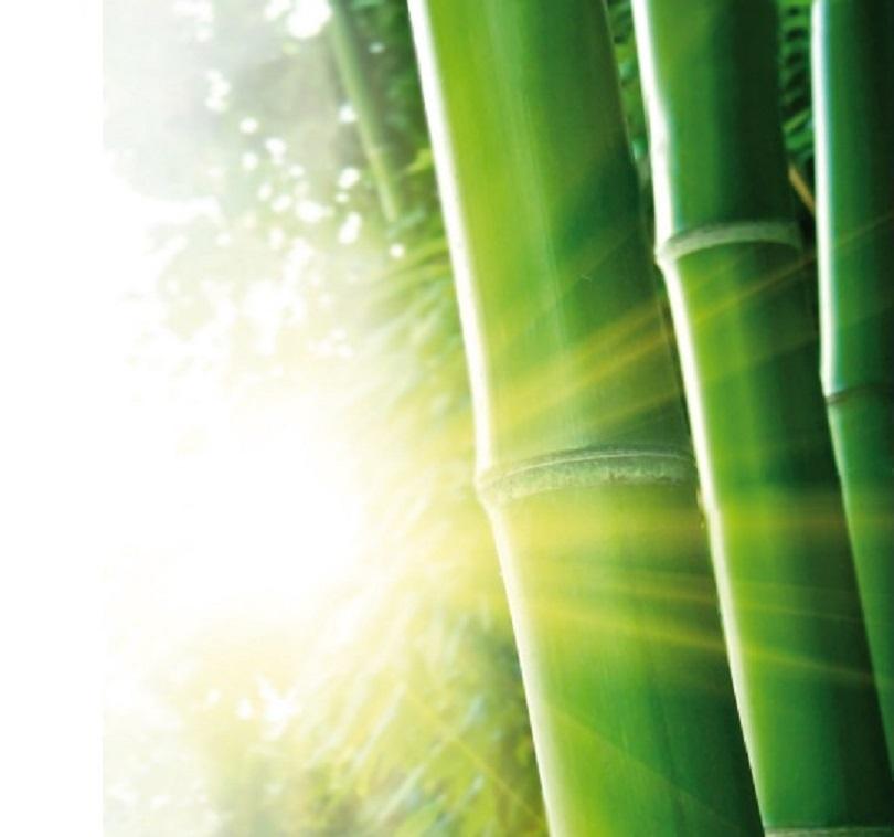 oreiller-charbon-de-bambou-thalasso-www-nabao-fr